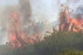 L'incendio doloso